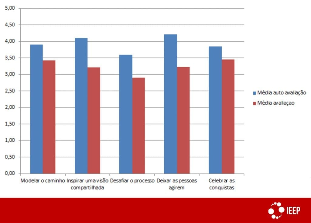 Desenvolvimento de lideranças: resultados da pesquisa 2