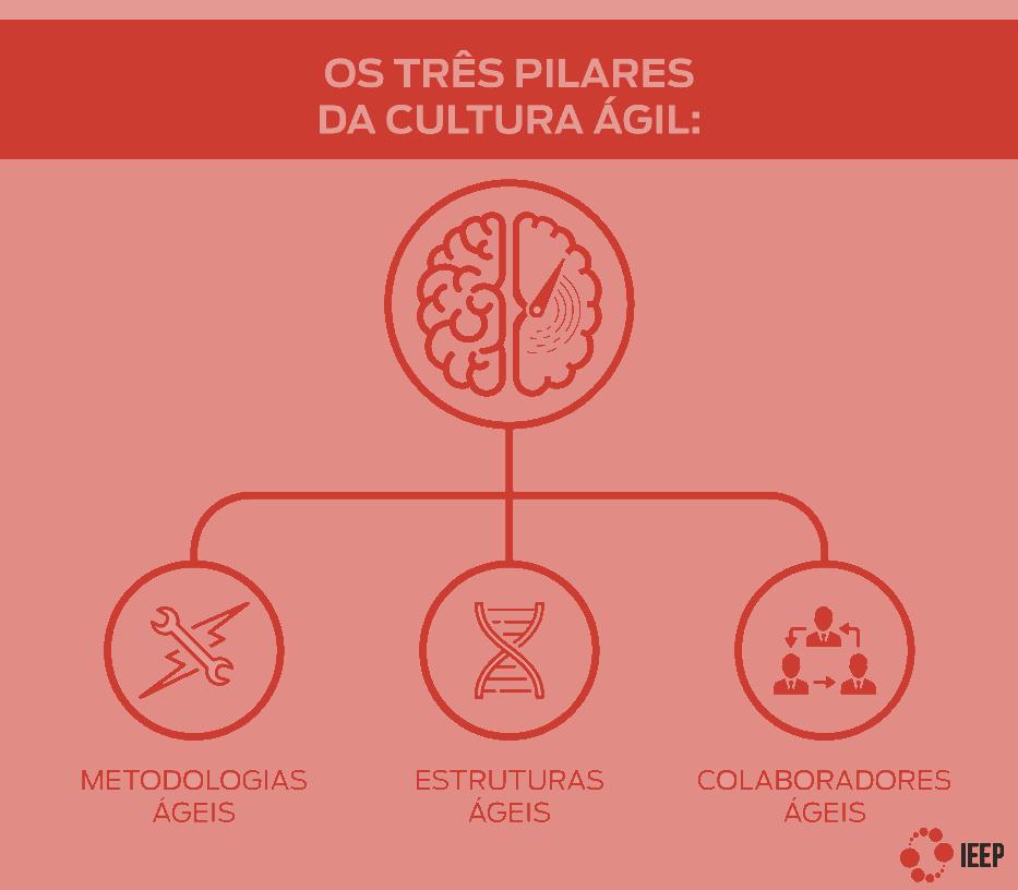 Pilares da Cultura ágil: metodologias ágeis, estruturas ágeis e profissionais ágeis